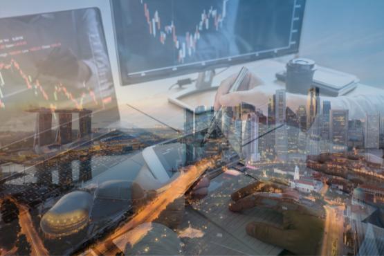 Global Investor Programme